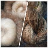 Links die gewaschene, kardierte Wolle, rechts gesponnen